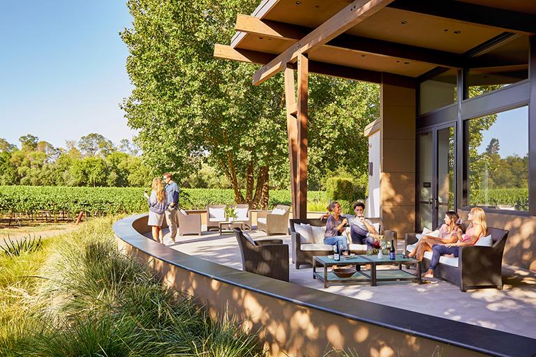 Healdsburg patio looking onto vineyards image