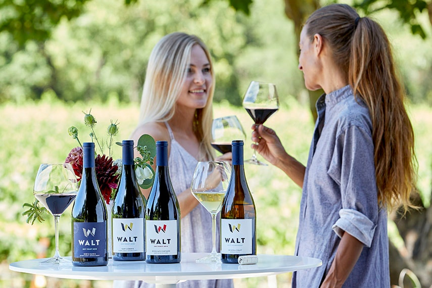 Daily Tasting Outside overlooking a vineyard in Healdsburg