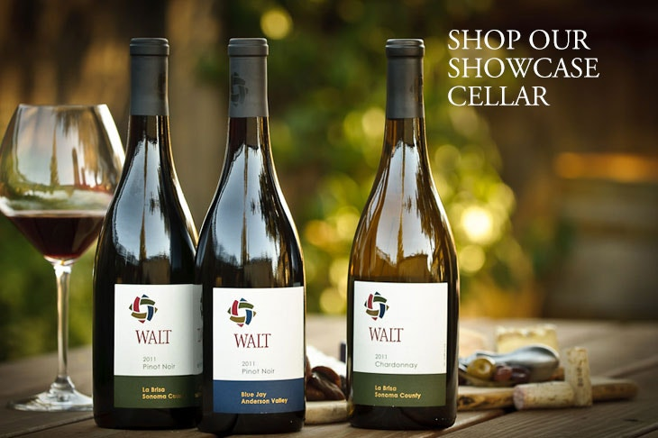 WALT Wines Showcase Wine Cellar